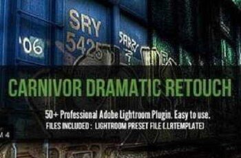 50+ Dramatic Adobe Lightroom Presets 43439 5