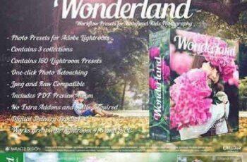 Wonderland 1002691 7