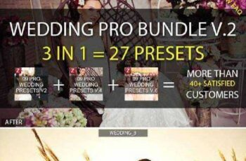 1806288 3-in-1 Pro Wedding Bundle vol.2 9129417 6