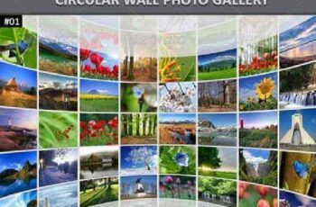 Circular Wall Photo Gallery 6041480 5