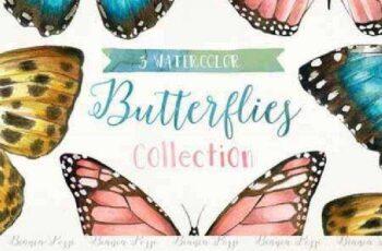 3 Watercolor Butterflies 198350 2