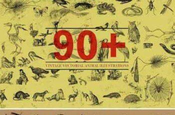 90+ Vectorial Animal Illustrations 412100 2