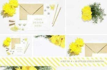 Styled Stock Photography Pack - 10 720878 5