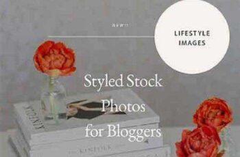 Styled Lifestyle Stock Photo Bundle 738748 4