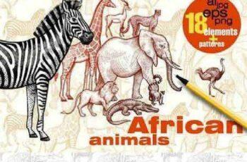 African animals 932545 6
