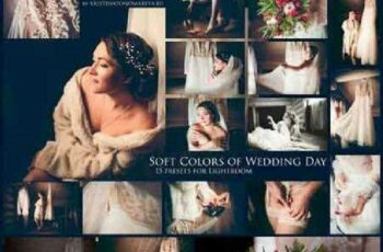 1701275 Soft Colors of Wedding 15 Presets 1149630 6