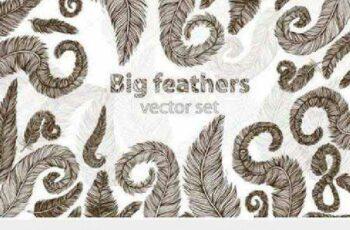 1701021 Big feather vector set 409154 9