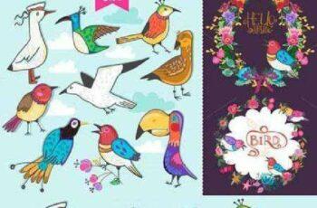 1701025 Birds 101290 5