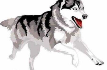 1701058 Dog vector 10 EPS 5