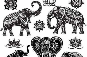 1701064 Elephants in the vector patterns and ornaments 5
