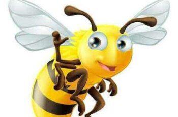 1701096 Honey Bee 26 Vector 9