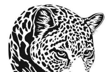 1701105 Leopard illustration 9 EPS 6