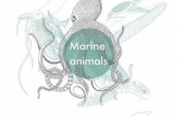 1701114 Marine animals 51032 3