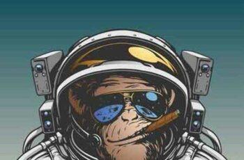 1701116 Monkey 2 25 Vector 3