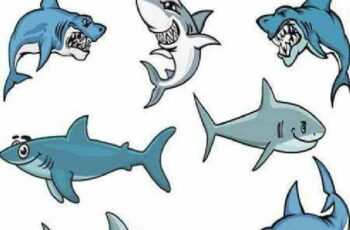 1701156 Shark 10 EPS 5