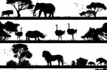 1701162 The Animals 10 EPS 4