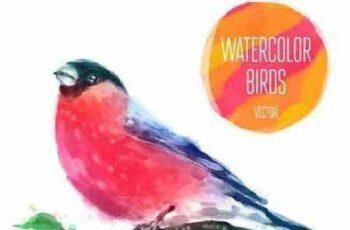1701180 Watercolor Birds 12 Vector 3