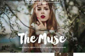 1702033 The Muse ~ 20 Lightroom Presets 299783