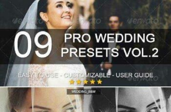 1702113 9 Pro Wedding Presets vol.2 6441398 3