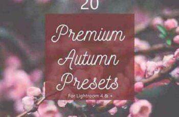 1702309 Pack 20 Premium Autumn Fall Presets 1167716 4