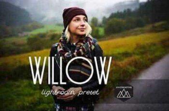 1702335 Willow LR Preset 1167157 2
