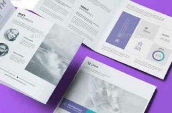 1702375 Multipurpose Square Tri-Fold Brochure 19292665