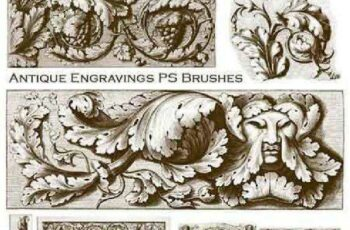 1702432 Antique Engravings PS Brushes 1189422 5