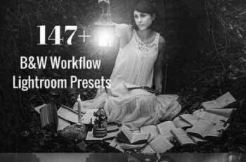 1702440 B&W Lightroom Presets Bundle 1175479 5