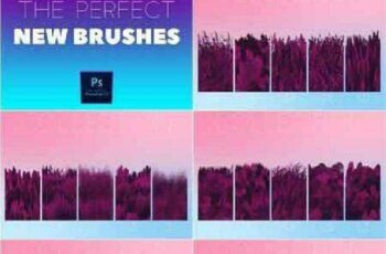 1702447 THE PERFECT NEW BRUSHES 1201262 3