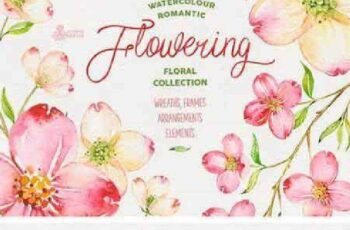 1702505 Flowering. Romantic Collection 1186553 3