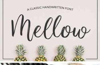 1703143 Mellow Script 1036058 8