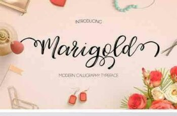 1703145 Marigold 1380032