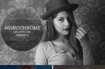 1703308 Monochrome Lightroom Presets 1472095 6