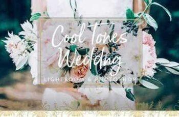 1704009 Cool Tones Wedding Presets LR & PS 1309875 13