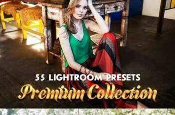 1704011 55 Premium Lightroom Presets 1437554 12