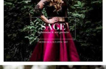 1704048 Sage, Moody Lightroom & ACR Presets 1587822 6
