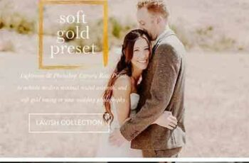 1704051 Soft Gold Wedding Presets 1527698 7