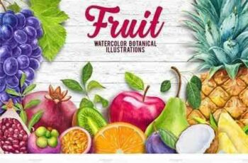 1704129 Watercolor Fruits Collection 1657955 4