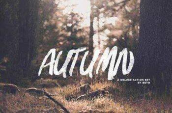 1704234 Autumn Action 85109 4