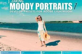 1704245 Moody Portraits 1 Lightroom Presets 1710068 3