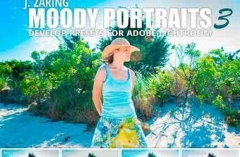 1705096 Moody Portraits 3 Lightroom Presets 1710111 6