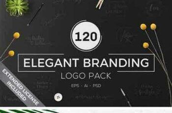 1705253 120 Elegant Branding Logo Pack 1729516 5