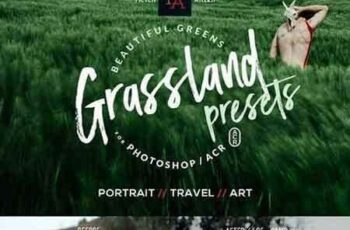 1706032 Grassland ACR Presets 1783535 4