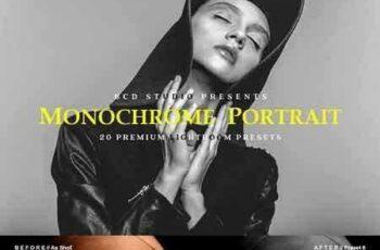 1706052 Monochrome Portrait LR Presets 1848312 2