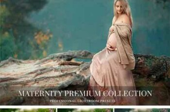 1706067 Maternity Lightroom Presets 1779520 5