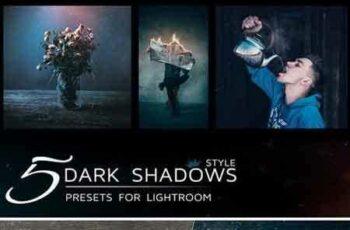 1706148 5 Lightroom Presets in dark tones 1821528 5