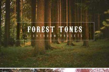 1706179 Forest Tone Lightroom Presets 1904563 6
