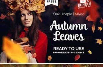 1706232 Autumn Leaves Photo Overlay 1870503 4