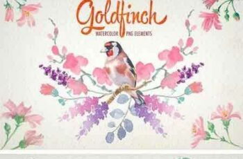 1707018 Watercolor Goldfinch Bird Clipart 1922106 3
