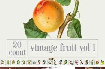 1707020 Vintage Fruit Bundle Vol. 1 1880678 5